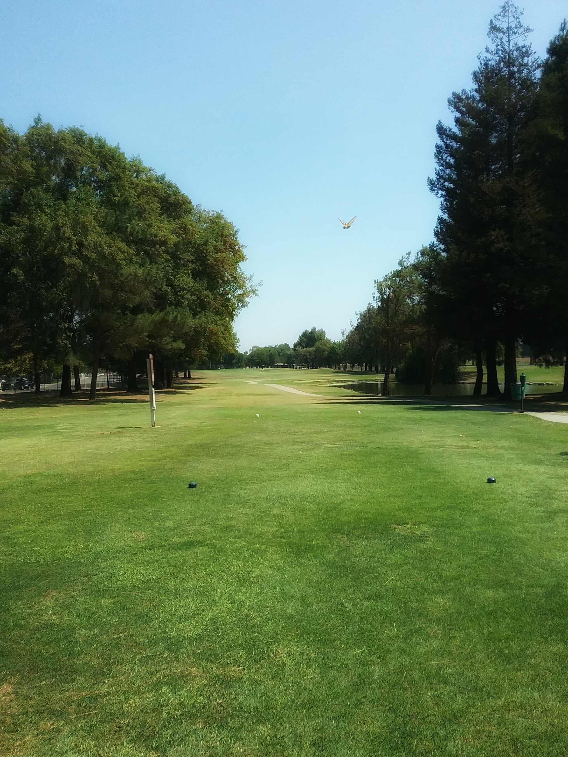 van buskirk golf course  stockton golf courses  stockton  ca