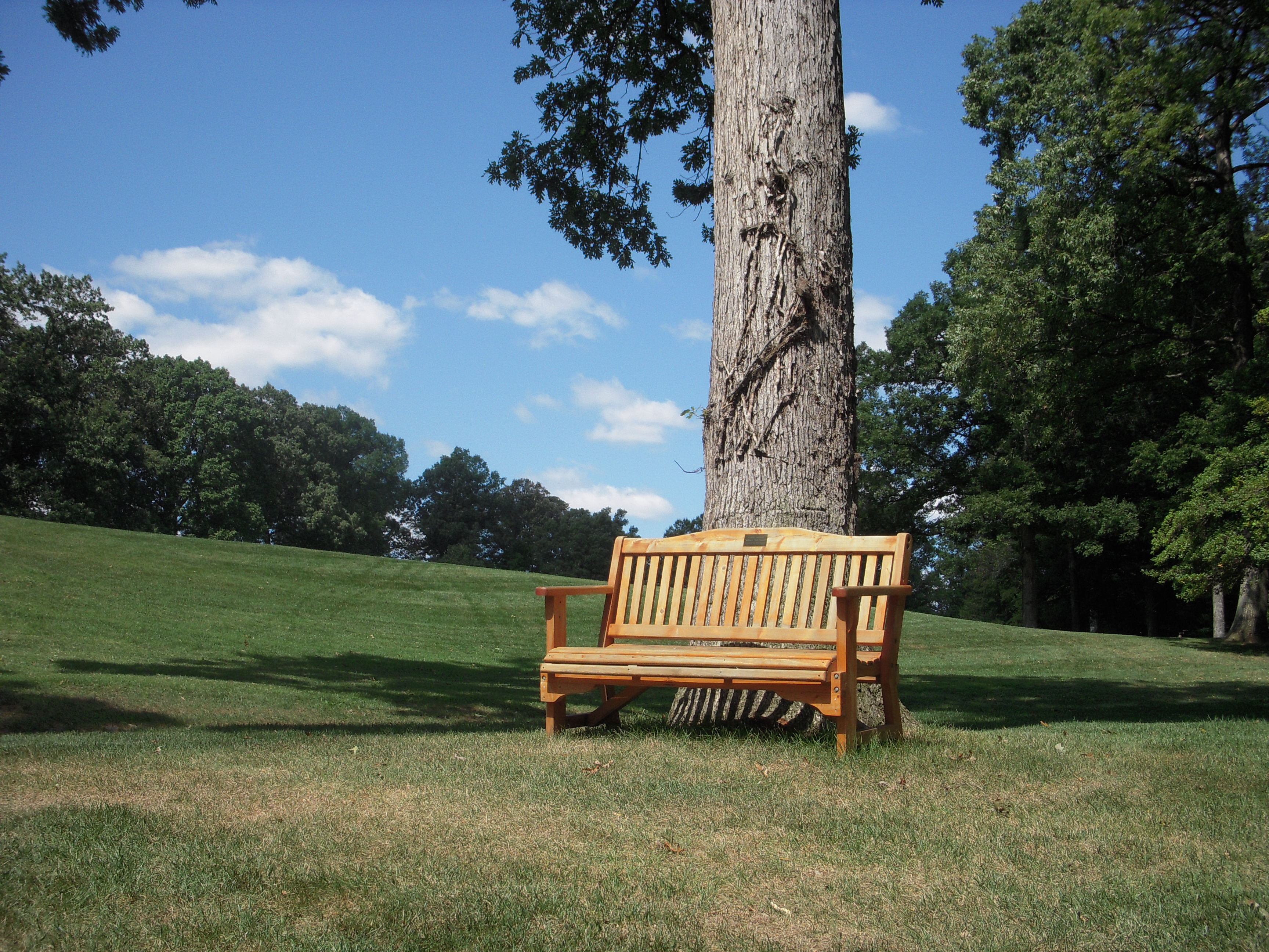 Golf Course Donated Bench