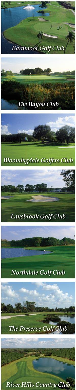 Photo Collage Bardmoor, Bayou, Bloomingdale, Lansbrook, Northdale, Preserve and River Hills