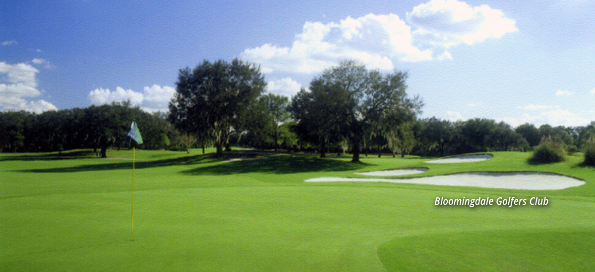 Photo Header Bloomingdale Golfers Club