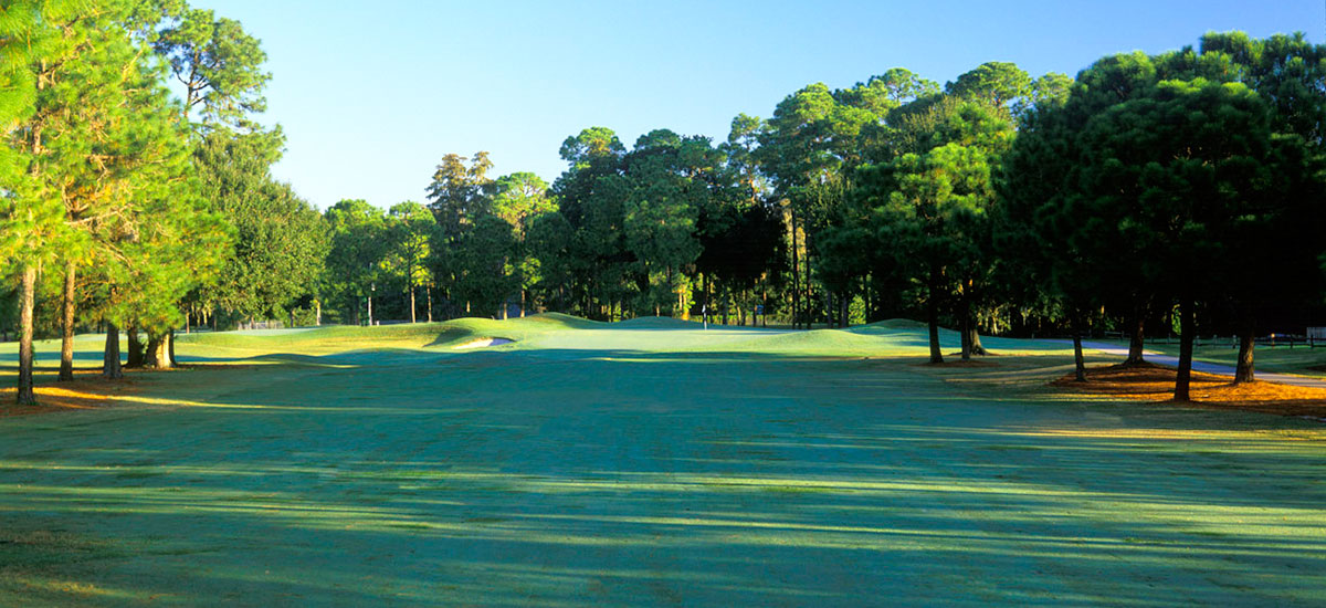 Photo Header Lansbrook Hole 10 Fairway