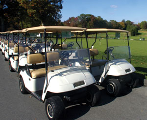 Photo - Golf Carts lined up