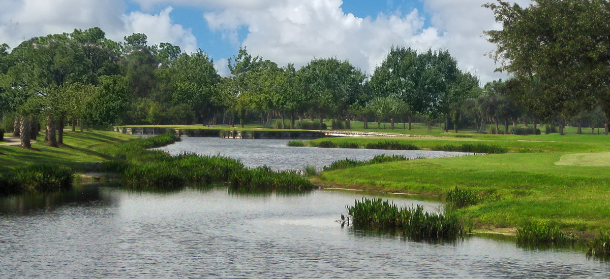 Photo Header The Preserve Hole 11 view from tee boxes