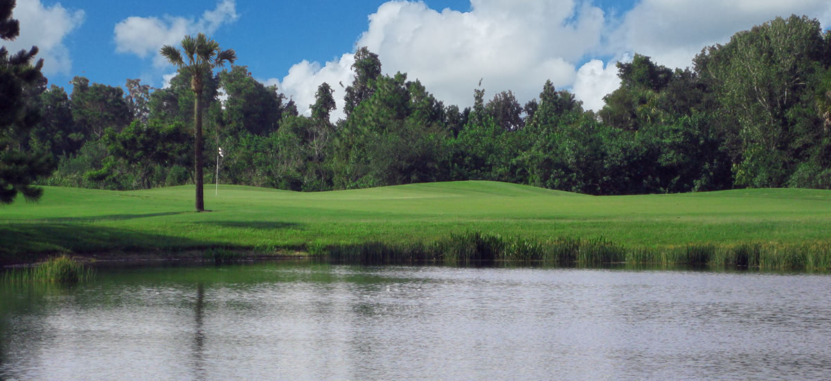 Photo Header The Preserve Hole 15 view of the green
